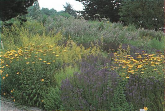 Основные принципы благоустройства сада - Клумба