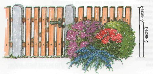 Основные принципы благоустройства сада - Принцип