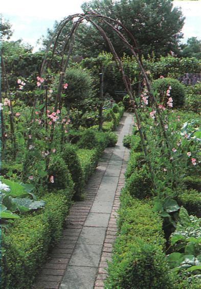 Основные принципы благоустройства сада - Оси сада