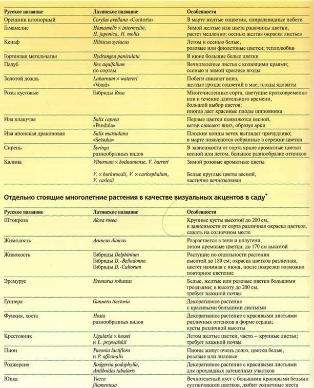 Расстановка визуальных акцентов в саду - таблица