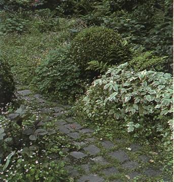 Дорожки и тропинки в саду и на участке - Покрытия тропинок из природного камня
