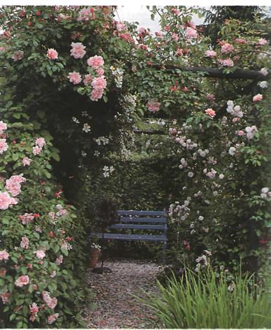 Сравнительные характеристики различных типов садов