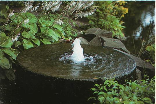 Ландшафтные работы на участке - Вода в саду