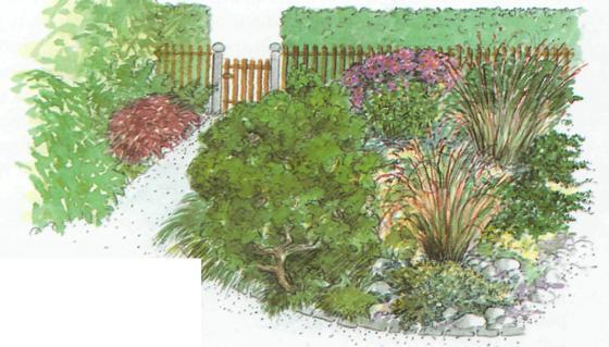 Озеленение приусадебных участков - пример озелененного сада
