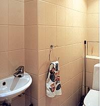 Перепланировка квартиры - Декоративный ремонт санузла