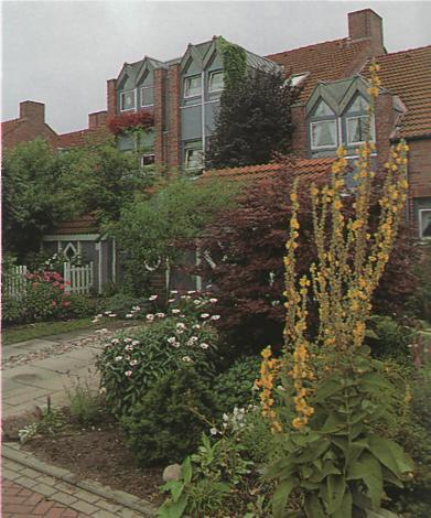 Полная перепланировка сада - новый палисадник