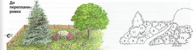 Полная перепланировка сада - сад до перепланировки