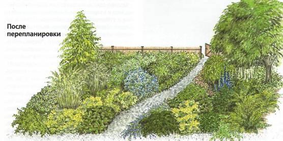 Полная перепланировка сада - сад после перепланировки