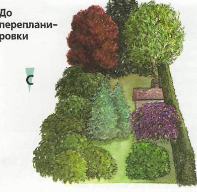 Преображение сада - до перепланировки сада
