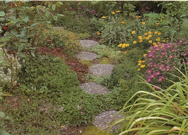 Устройство садовых дорожек - Декоративный бетон