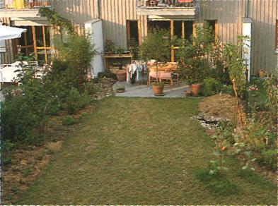 Создание ланшафтного дизайна сада - План сада