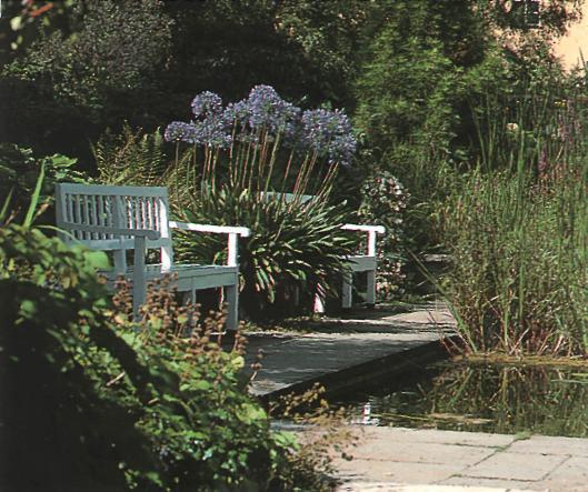 Стильный сад - до перепланировки