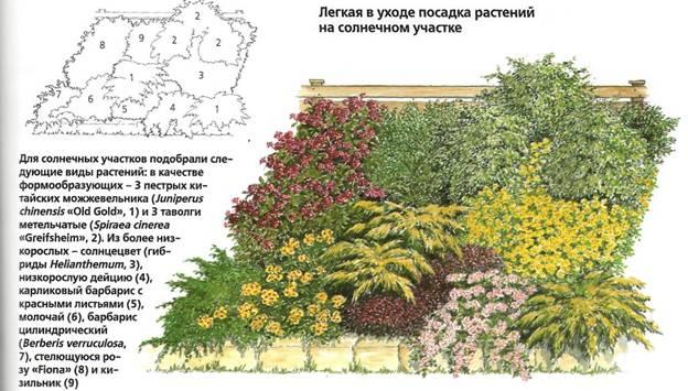 Как сделать уход за садом менее трудоемким - пример сада