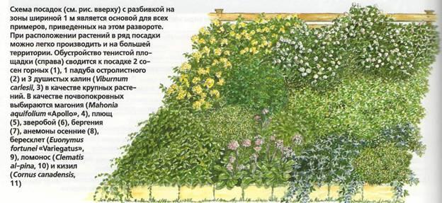 Как сделать уход за садом менее трудоемким - пример сада 2