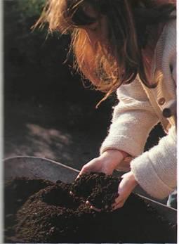 Улучшение почвы в саду - Легкие почвы