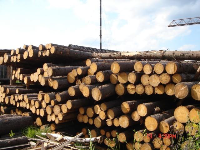 Лесоматериалы - Складированый лес